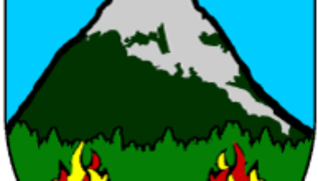 FOCW_logo